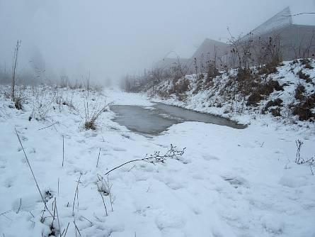 bd_we_winter1